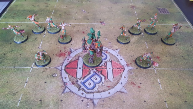 [Peinture] [Blood Bowl] Sauce Cysterion Pitch10
