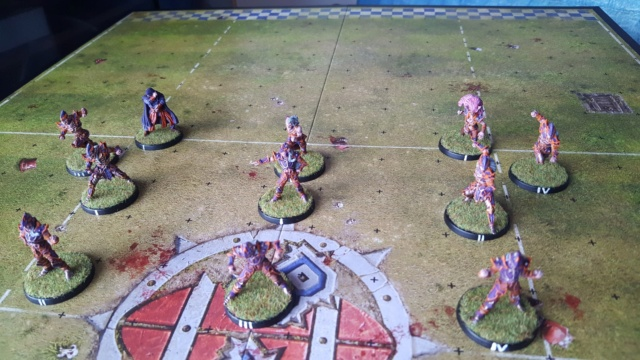 [Peinture] [Blood Bowl] Sauce Cysterion Pitch11