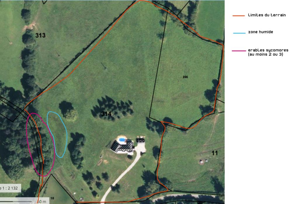 Problématique achat maison + terrain : érables sycomores Plan-e10