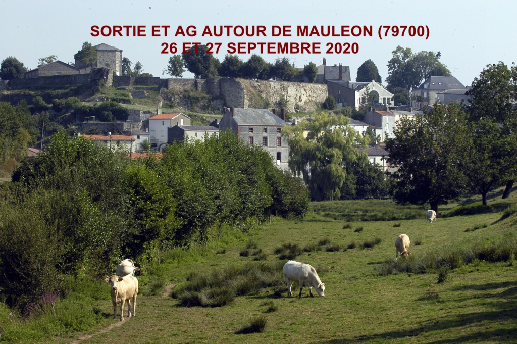 SORTIE MAULEONS 2020 17689410