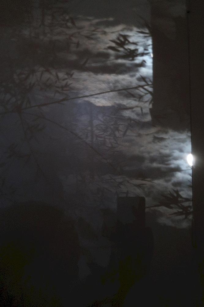 Diffraction d'une image - Ajout Img_0711