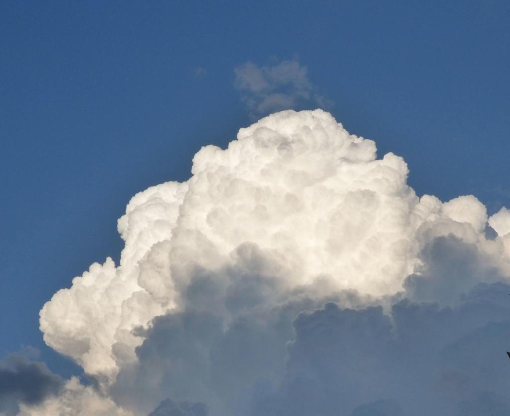 LE nuage .... P1000810