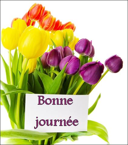 Pour se dire Bonjour - Page 19 Image17