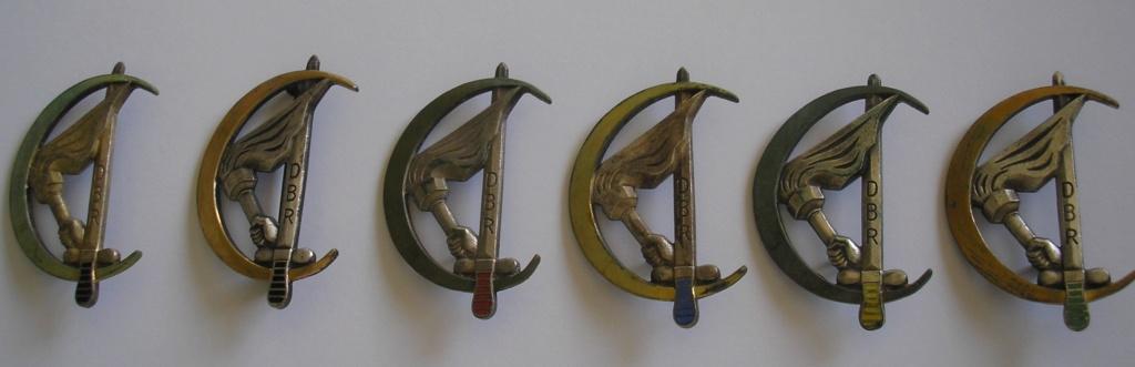 Les insignes des Demi-Brigade de Recherches en A.F.N Dbr_fa10