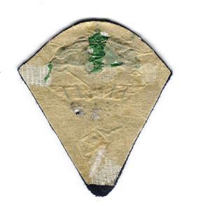 Insigne tissu a identifier  Ep_cni15