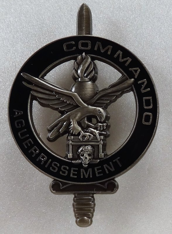 """Votre avis sur ce """"brevet"""" Commando Aguerrissement  Gie10"""