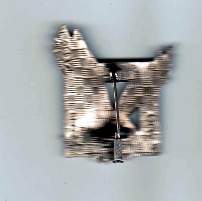 Insigne  Sicut Aquila  des Fusilliers-Commandos de l'Air  Img_2069