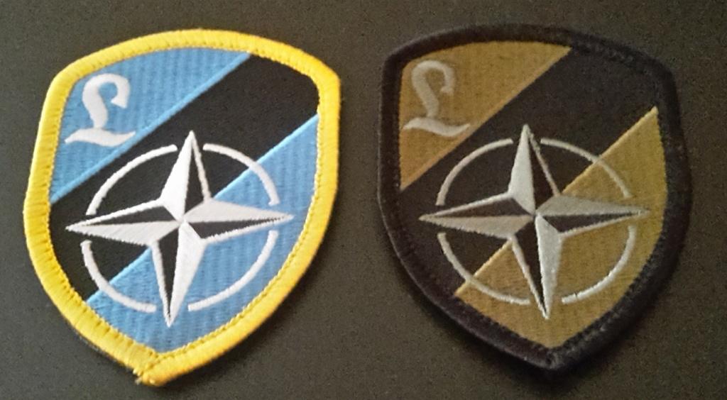Identification insigne de manche Sigle OTAN + lettre Insign15