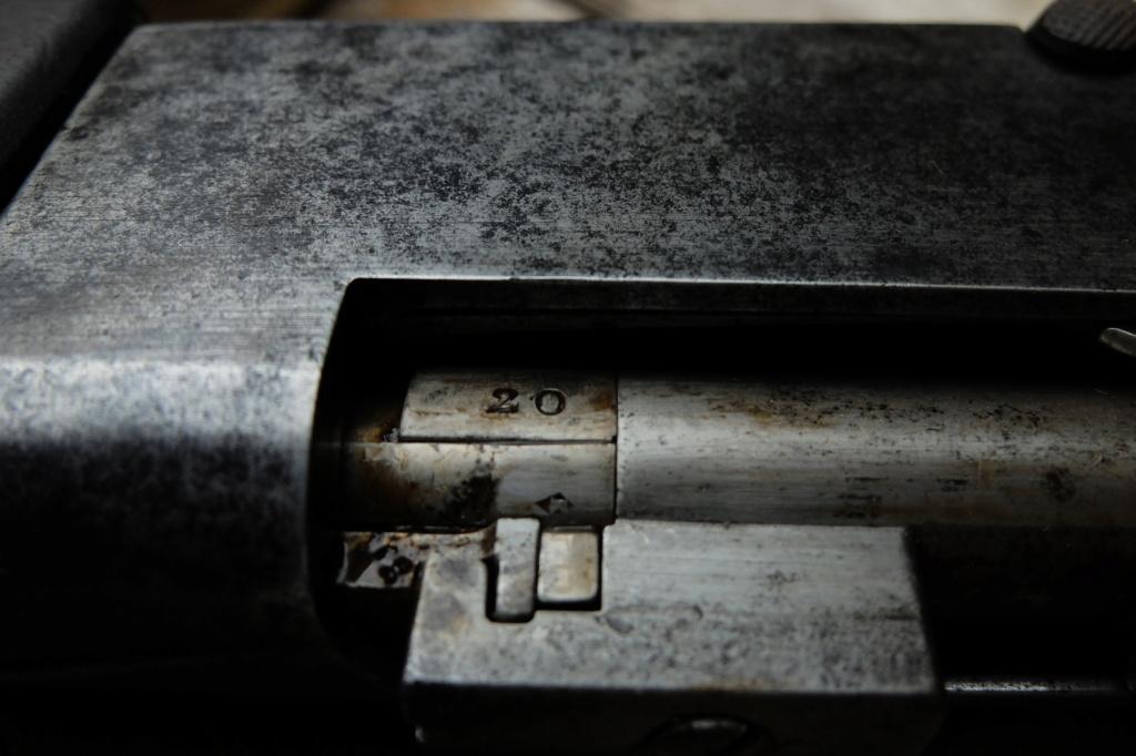Lebel 1886 (surprise supplémentaire)!!! Dscf9923
