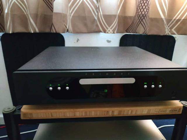 Primare CD31 Primar12