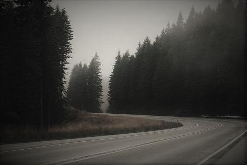 Дорога на Базу Д-3 Sa__-311