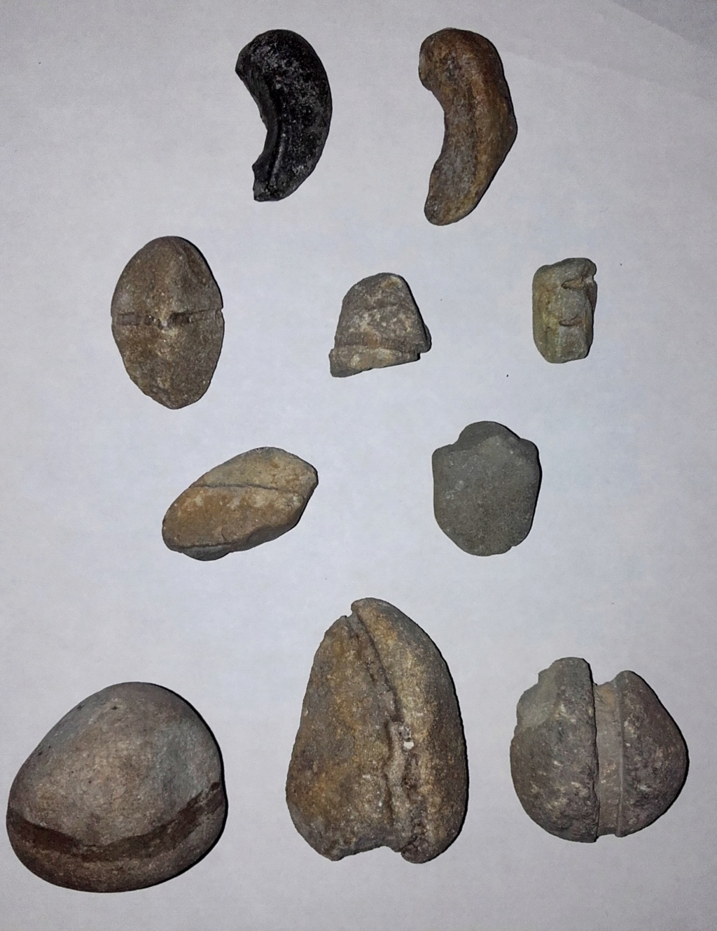 Pesas y anzuelos prehistóricos 20181016