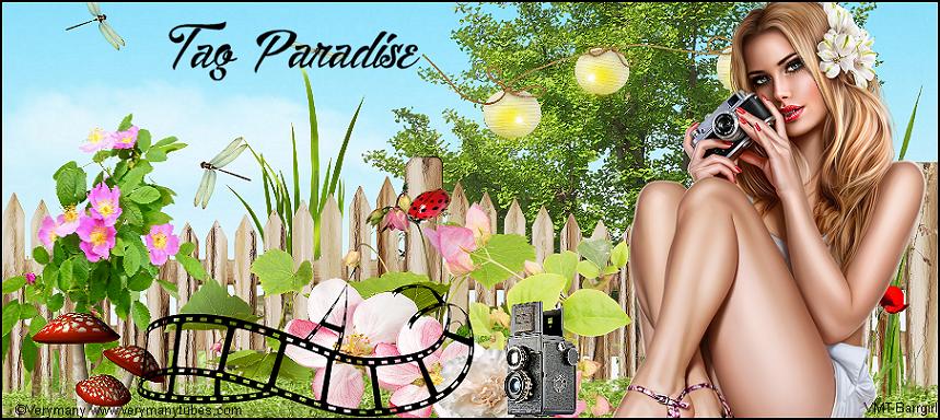Tag Paradise