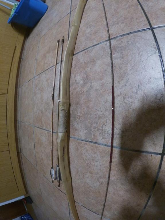 Arco improvisado de saúco Gopr1316
