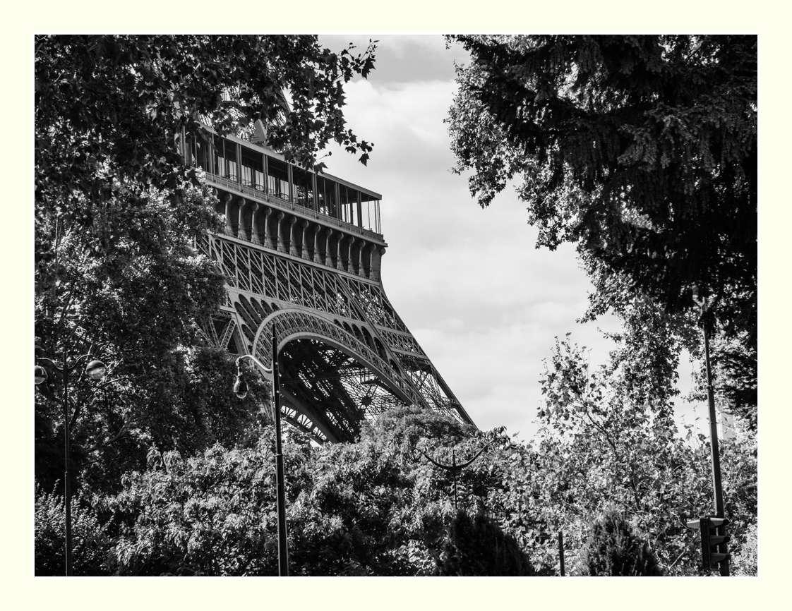Autour de la tour _1021014