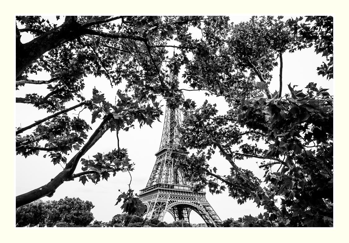 Autour de la tour _dsc4815
