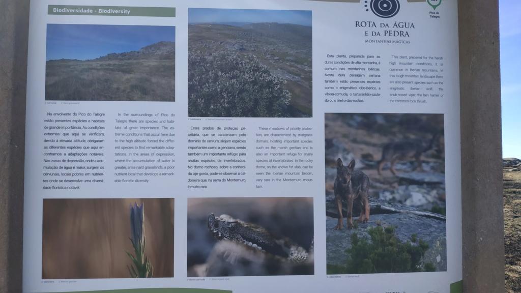 Entre Serras e Rios... Img_2031