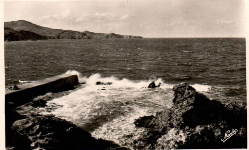 L'Arago (Banyuls, 66) Banyul11