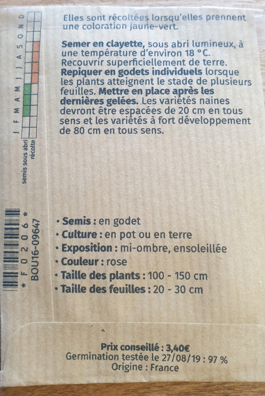 La plantation de pipeman  20200319