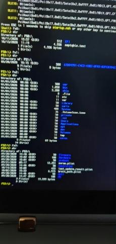 Triple boot Big Sur-Linux-Windows 10 sur un disque 20201012