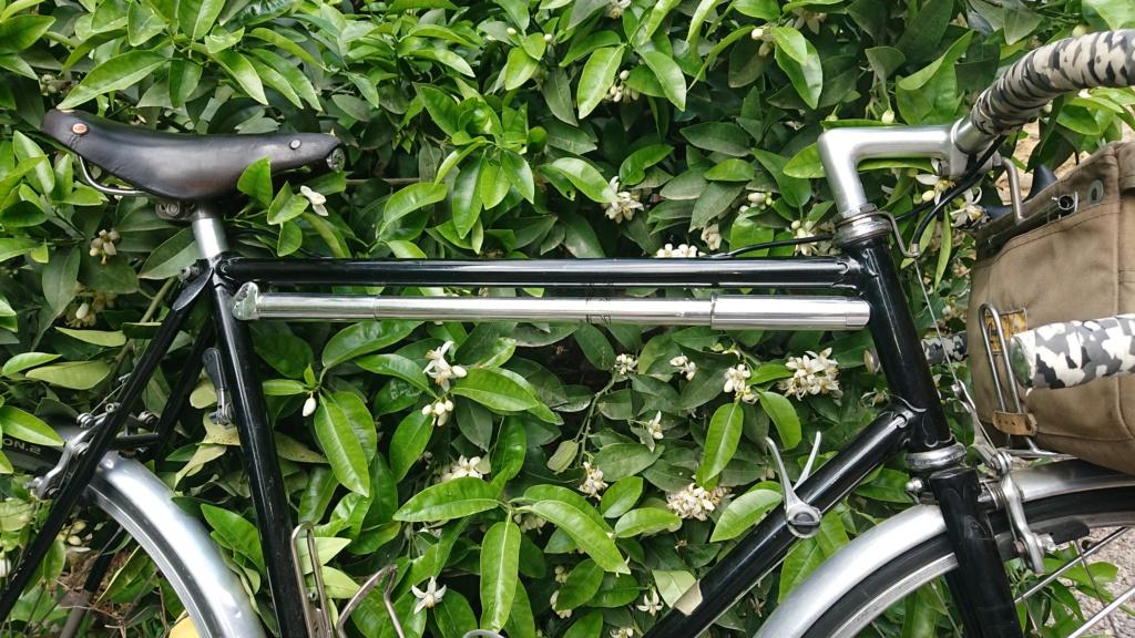 randonneuse artisanale; le vélo de Mr Henri. Dsc_0148
