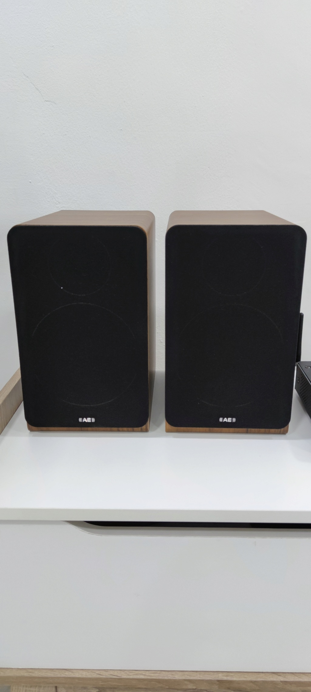 Acoustic Energy AE100 Bookshelf Speaker 16199910