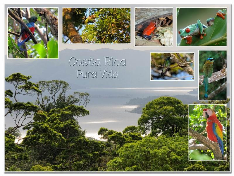 MAJ album Costa Rica sur Picasa Cr-00110