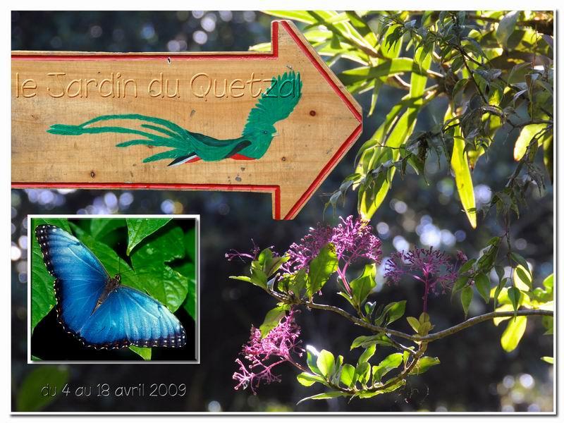 MAJ album Costa Rica sur Picasa Cr-00910