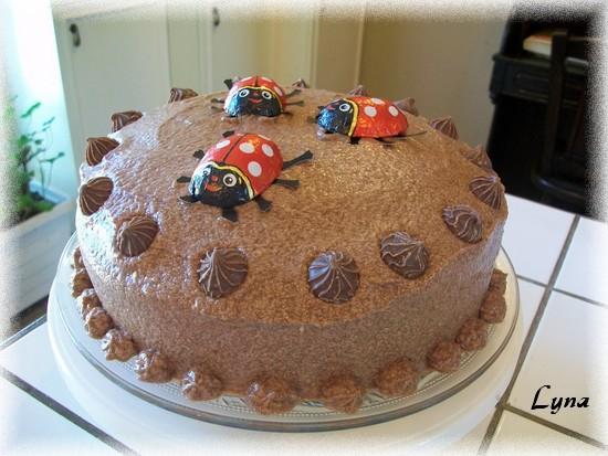 Gâteau au chocolat et glaçage moka Glacag12
