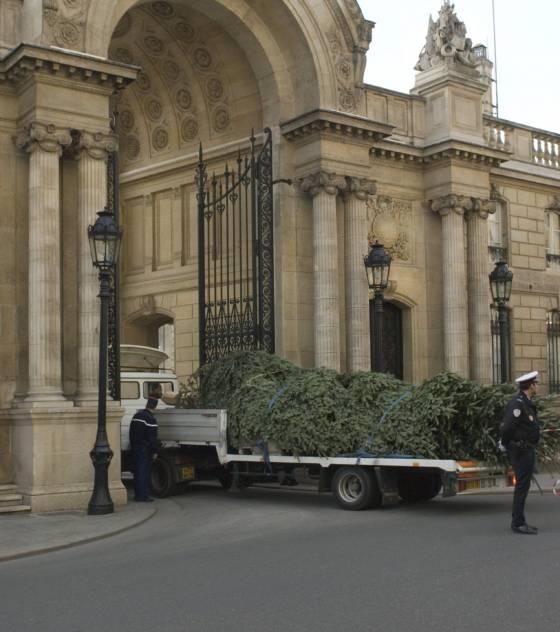 découvrez le sapin de Noël 2009 de l'Elysée Arrive10