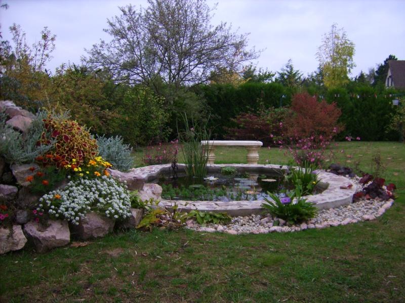 Votre photo pour Décembre 2009 - Page 2 Dsci0011