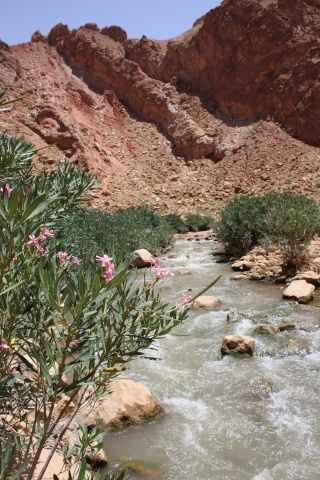 randos: petite suggestion. Maroc-15