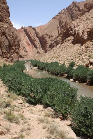 randos: petite suggestion. Maroc-16