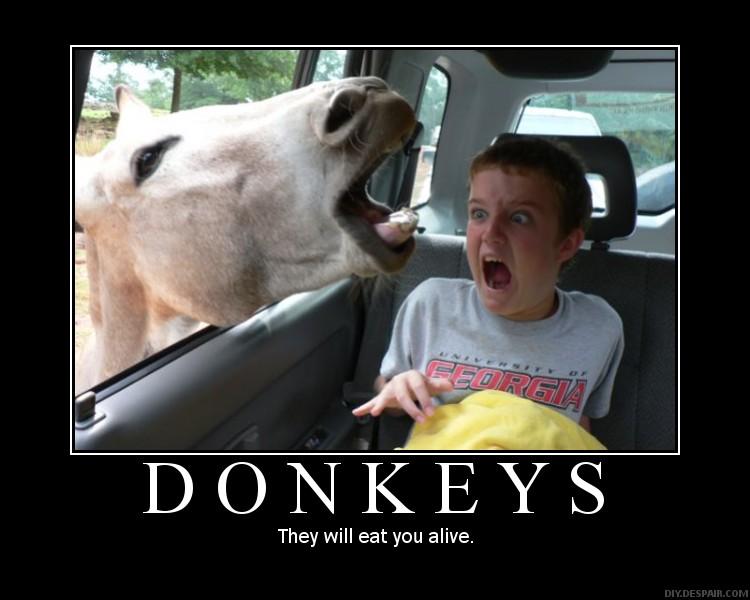 Motivational Posters Donkey10