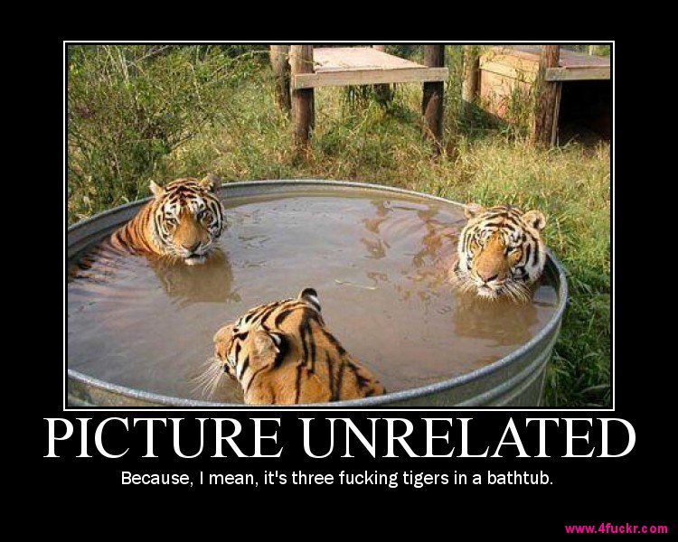 Motivational Posters Tigers10